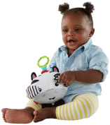 Fisher-Price Peek-a-boo Giggles Roscoe Baby Toy