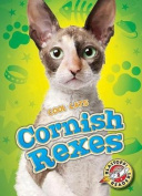 Cornish Rexes (Cool Cats)