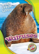Walruses (Ocean Life Up Close)