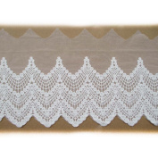 17cm Cotton Embroidered Net Yarn Lace Trims Pack of 2 Yards