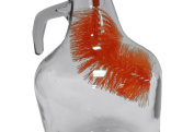 DEMIJOHN /HOME BREWING CURVED BOTTLE BRUSH