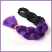 New Bee Hair.3Pcs/Lot Kanekalon Ombre Purple Braiding Hair High Temperature Fibre Expression Braiding Hair 100g/Pcs Synthetic Braiding Hair Extension