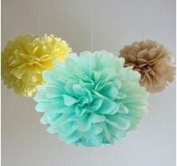 Since ® 12 Mixed Mint Yellow Tan Party Tissue Pompoms Paper Flower Pom Poms Wedding Birthday Party Girls Room Decoration SIC-01728
