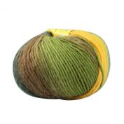 Celine lin One Skein 100% Wool Thick Warm Hand knitting Yarn 100g,Multi-coloured 14