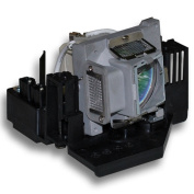 HFY marbull BL-FP200D/DE.3797610.800/DE.379761080 Replacement Projector Lamp with Housing for Optoma DX607 / EP771 / TX771