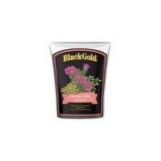 Black Gold Cactus Mix 7.6l