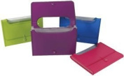 Filexec Products AE43980 Expanding 13 Pocket File with Window 9.5x13 Neon