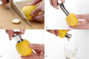 ew Arrival High Quality Stainless Steel Lemon Drilling Juicer
