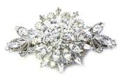 Big Barrette Clip Flower Gorgeous Clear Crystal Bridal Bridesmaid Wedding Party