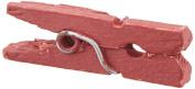 Mini Clothespins 25/Pkg-Raspberry