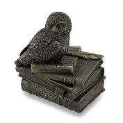 Owl Perched On Stack of Books Bronzed Trinked Box/Stash Box Statue