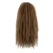 """Simpleyourstyle 32pcs/1Pack Afro Kinky Curly Crochet Braids Hair 34"""" 86cm 100g Synthetic Twists Braiding Hair Extension 27#"""
