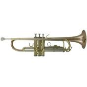 Roy Benson RBTR-202G Bb Advanced Trumpet
