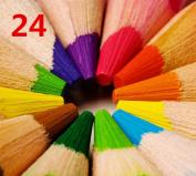 24-colour Fine Art Coloured Pencils/ Drawing Pencils for Sketch/ Secret Garden Colouring Book