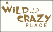 Wall Decor Plus More A Wild And Crazy Place Wall Sticker Saying for Nursery or Kid's Room Decor 23W x 12H - Tan Tan