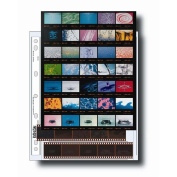 35mm Size Negative Pages Holds Seven Strips of Five Frames with Contact Sheet, Pack of 25