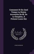 Comment Et En Quel Temps La Reyne Accoucha de M. de Le Dauphin, a Present Louis XIII