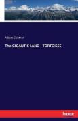 The Gigantic Land - Tortoises