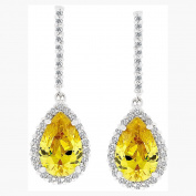 J Goodin Precious Womens Fashion Ornament Canary Cubic Zirconia Drop Earrings