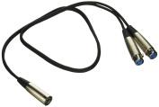Seismic Audio 0.9m NEW 0.9m Splitter Patch Cable 1 XLR Male to 2 XLR Female Black - SA-Y4.3