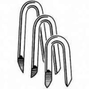 National Nail Staple Fence Eg 1-1/4 In 0.5kg 79078