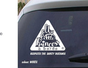 Baby on board vinyl sticker VPCE33