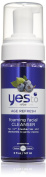 Yes to Blueberries Foaming Facial Cleanser, 150ml by Yes To Inc.