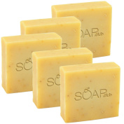 Goat's Milk Citrus Coconut Oil Soap With Organic Shea Butter and Olive Oil 160ml 5 Pack