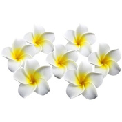 Healthcom Premium Hawaiian Foam Flower For Wedding Party Decoration, Package of 100