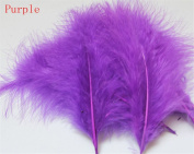 Hgshow 100Pcs Turkey plumage, Many Colour Options,Each about 13cm - 15cm in length