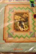 Frame-Ables Bargello Counted Cross Stitch Picture Frame Southwest Patterns
