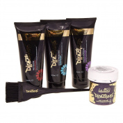 La Riche Unisex Directions Colour Hair Dye Kit - One Size, Violet