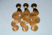 YanT HAIR 6A Grade Ombre Hair Brazilian Virgin Hair Body Wave Human Hair Weave 3 Bundles 22 22 60cm #T1b/27 Colour Pack of 3