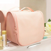 Vanity beauty makeup case for travel