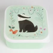 A Great Lunchbox Sandwich Box ~ Badger ~ Sandwich Lunch Box for Children