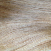 """Nano Tip 1.0g Remy hair extensions 25 Strands 20"""" Light Blonde"""