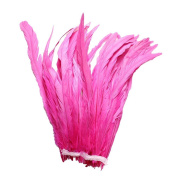 25pcs 25cm - 30cm Bleach-Dyed Rooster Coque Tail Feathers, 16+ Colours to Pick Up