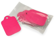 Hot Pink Gift Tags 9.5cm x 6cm - 50pack