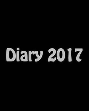 Large Print Diary 2017