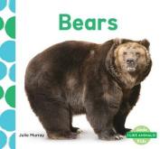 Bears (I Like Animals!)