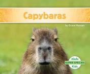 Capybaras (Super Species)