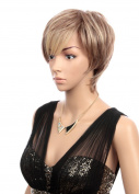 Prettyland wig - layered cut short slightly wavy wig in brown with blonde streaks C1701