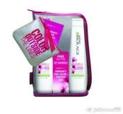 Matrix Biolage - Colorlast Shampoo + Conditioner + Free Coin Purse & Travel Case