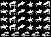 Horse Eventing 2.5cm - White 16CC589 Fused Glass Decals