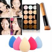 Toraway Pro 15 Colours Makeup Concealer Contour Palette + 1PC Water Sponge Puff + 1 PC Makeup Brush