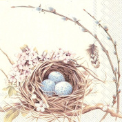 Boston International 40 Count 3-Ply Paper Lunch Napkins, Birds Nest with Eggs