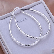 HuntGold 1 Pair Vogue Women's Snake Belly Earrings U Hoop Stunning Silver Plated Twinkle Eardrop