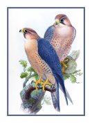 Peregrine Falcon by Naturalist John Gould Birds Counted Cross Stitch Pattern