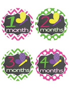 Chevron & Butterfly Baby Milestone Stickers