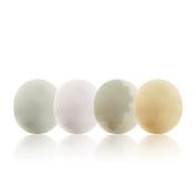 OCEANE OC70 Bath Bomb Fizzies Handmade Soaps 4 fragrance Set